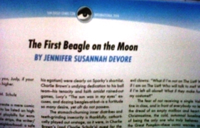 2010 Comic Con Souvenir Book article
